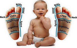 Reflexology. baby foot map